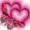 Il tuo cuore ha le ali?