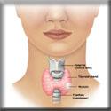 Noduli alla tiroide: ti devi preoccupare?